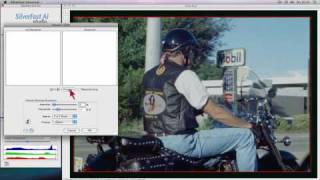 SilverFast Videos (English)