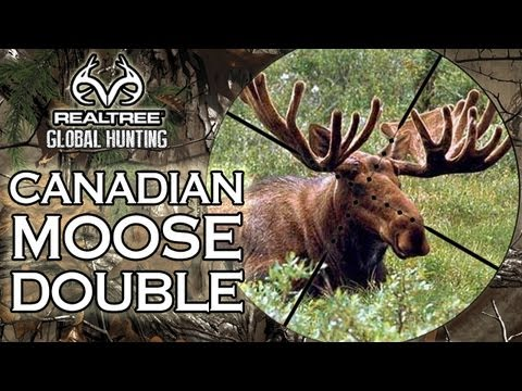 EPIC Canadian Moose Hunt - Two Giant Bulls!