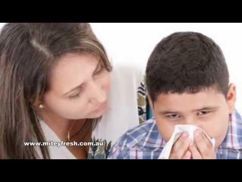 How do Dust Mites Affect Asthma and Allergy Sufferers?