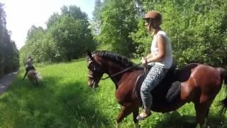 Russia - horse ride
