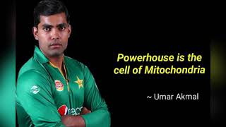 Umar Akmal Quotes!!!  Funny Umar Akmal