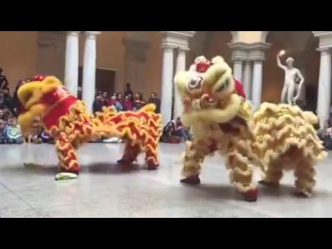 Walters Art Museum Chinese New Year Celebration 2016