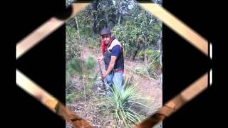 El Corrido De La Liberacion De Rafael Caro Quintero Con El Mezcalero De La Sierra