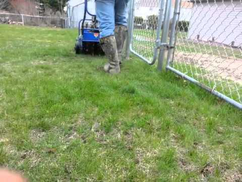 "How to aerate  your lawn!! ""Rented aerator"""