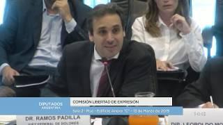COMISIÓN COMPLETA: H. Cámara de Diputados de la Nación - 13 de Marzo de 2019
