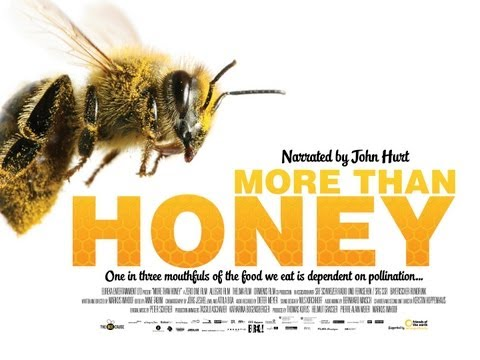 MORE THAN HONEY Official UK Theatrical Trailer (featuring John Hurt narration)