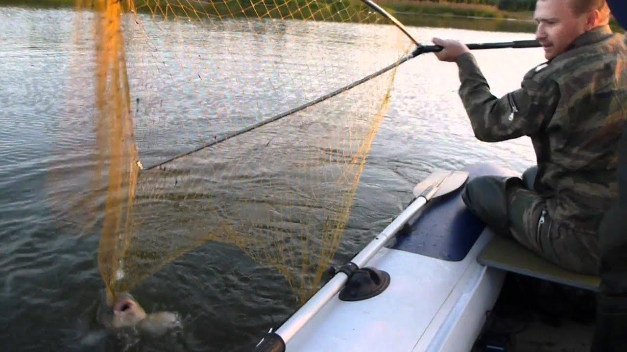 обское море рыбалка на сазана уловистые места
