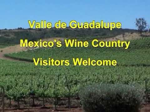 Valle de Guadalupe (Mexico's Wine Country)