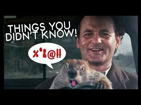 7 Groundhog Day Facts to Watch. Share. Repeat.