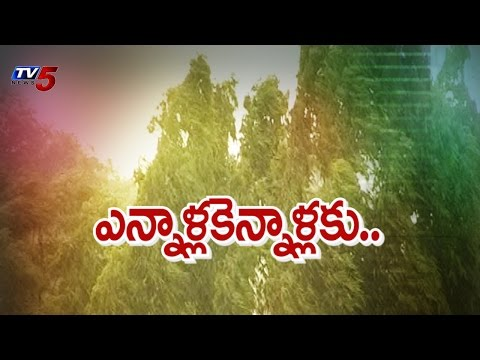 Southwest Monsoons in AP and Telangana : TV5 News