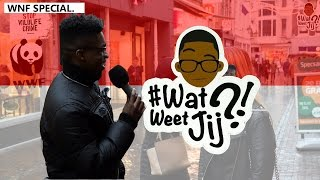 #WATWEETJIJ?! | WNF SPECIAL!