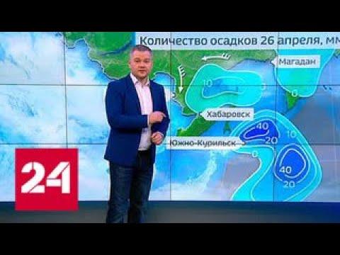 Погода 24: площадь лесных пожаров в Приамурье растет - Россия 24