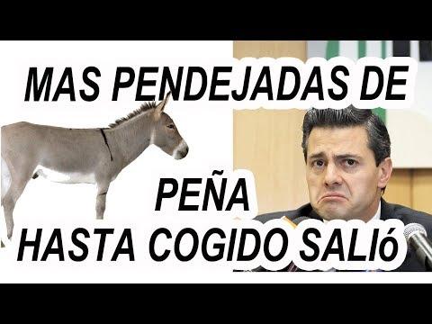 Mas Pendejadas de Peña, Hasta Cogido Salió, MIRA COMO LO DIJO!