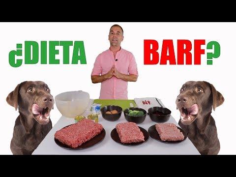 ¿Dieta BARF? 2€/día - Preparación DIETA Sana Y Equilibrada Para Tu PERRO