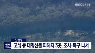 투/고성 등 대형산불 피해지, 조사·복구 추진