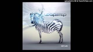 Loopstep - Authorized Access -ALBUM CODED PATTERNS -