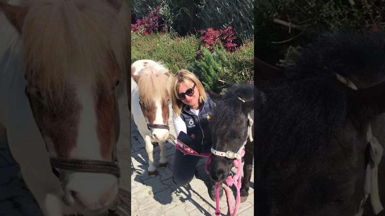 Zoe e Anne  Pony Club Dunia Ranch