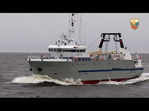рыболовный траулер механик сергей агапов