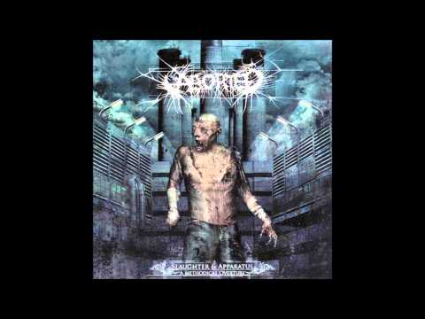 Aborted - The Spaying Seance