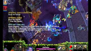 Warcraft 3 Frozen Throne - Night Elf Campaign Speedrun By Jury Rosenkilde Part 07