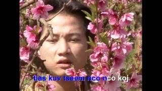 Pom Zem Zuag - Voos Yaj
