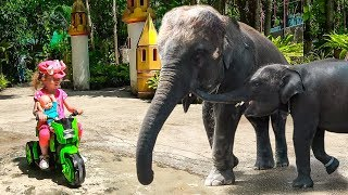 Baby rides in the zoo and feeds funny animals Video for kids