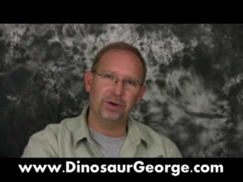 Ask DG #98 -- Sleeping Dinosaurs, Mosasaurs, Jurassic Fight Club and Oviraptor Video