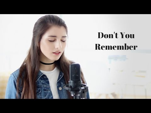 Don't You Remember - Adele - Annabelle Kempf Cover