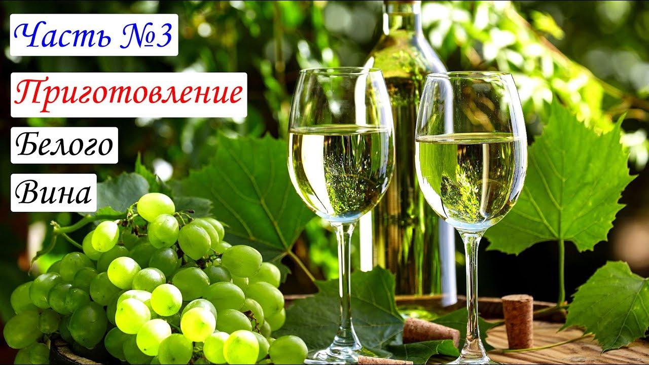 Как осветлить вино в домашних условиях 41