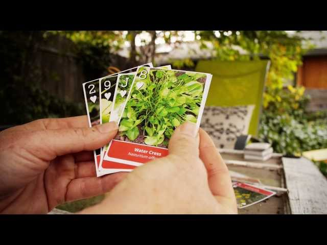 Wild Edible Playing Cards