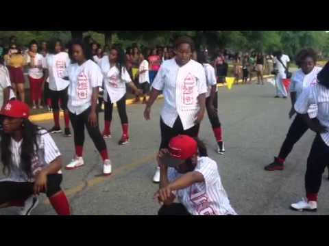 Delta Rho Chapter of Delta Sigma Theta Yard Show 2013