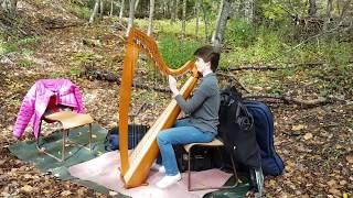 Coxheath Hills & a Harpist - Celtic Colours 2018