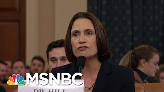 Wallace: Fiona Hill Laid Bare 'Domestic Political Errand' By President Trump | Deadline | MSNBC