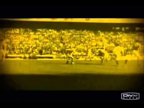 Homenaje a Don Alfredo Di Stefano: Una vida dedicada al Real Madrid
