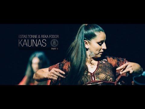Download Estas Tonne & Reka Fodor @ VDU Kaunas 2014 HD Part II Mp4 baru