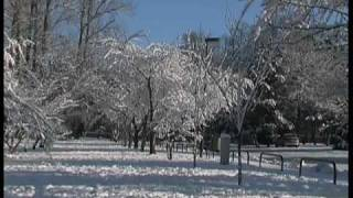 Four Seasons - Winter - Vivaldi