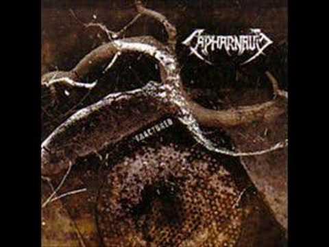 Capharnaum - Refusal
