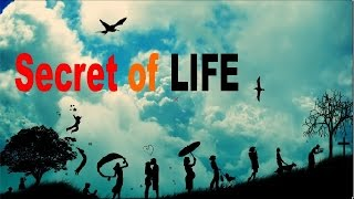 Reality of Life | Inspirational Videos About Life in Hindi | Must Watch