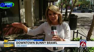 Man in bunny fight video says he was defending woman