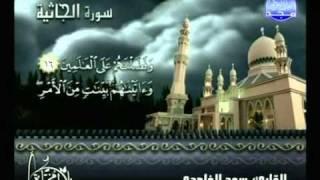 التلاوات المختارة | الشيخ سعد الغامدي ( سورة الجاثية )