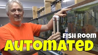 Breeding 1,000's of Fish out of This Fish Room...