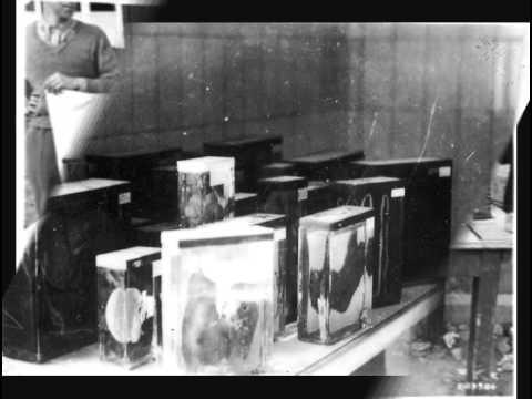 Крематорий - Jedem das Seine