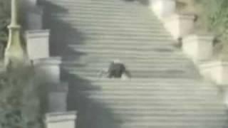 CAÍDAS DE BORRACHOS 【Loquendo】