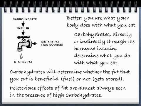 Macronutrients, caveman diets, metabolic syndrome and all that.