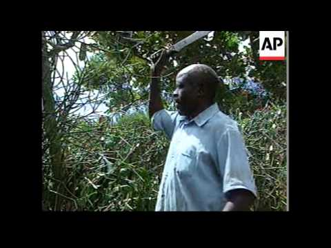 UGANDA: DOOMSDAY CULT TRAGEDY: MEMORIAL