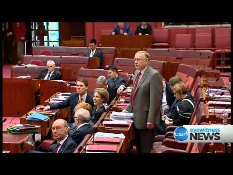 Ten Eyewitness News Sydney | Opener &