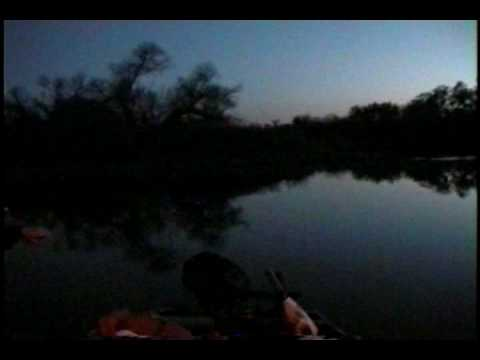 top water striper fishing manteca california