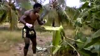 Muay Thai Training - Buakaw, smashing a Tree... Must watch