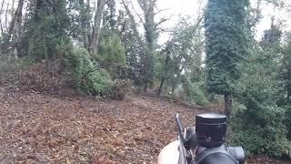 Doublé De Sanglier - Chasse corse battue sanglier (25 novembre 2018)