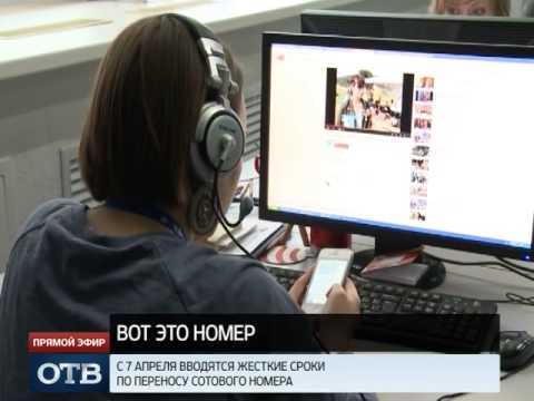 Интернет-дайджест: Крым на Яндекс-картах и добрые мафиози